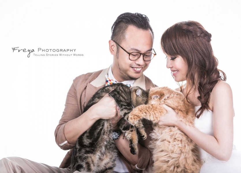 studio prewedding photos hk pet5