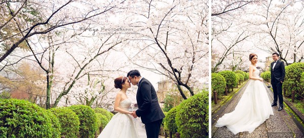 京都-pre-wedding-cherry6